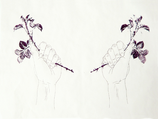 Drawing Grasping rose